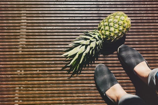 obtener online comprar baratas super calidad Qué son los zapatos veganos? Marcas y materiales ...